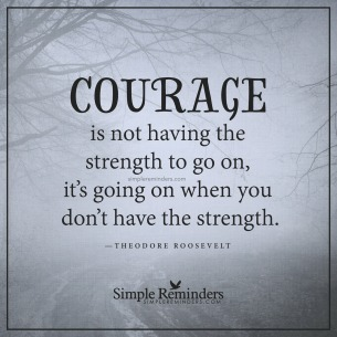 theodore-roosevelt-courage-strength-go-on-5r2q